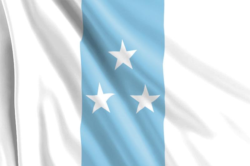 Bandera de Ecuador Marcista 1845
